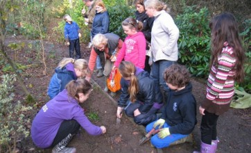 Orchid Environmental Trust Fund