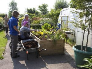 A stroke of genius at Normandy Therapy Garden